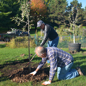 City Plants Community Orchards to Help Families in Need