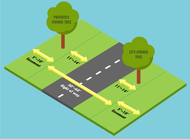 Graphic showing city-owned tree in the right of way and privately owned tree outside the right of way