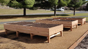 Pioneer Park Raised Garden Beds
